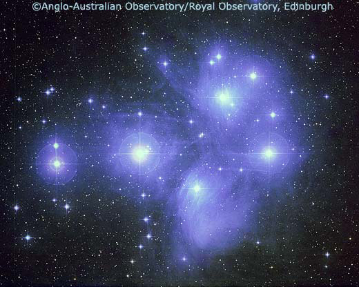 Telescopic photograph of the Pleiades - UK Scchmidt series: copyright AAO/ROE